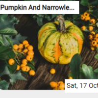 Pumpkin And Narrowleaf Firethorn Jigsaw