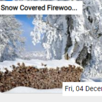 Snow Covered Firewood Sta…