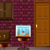 G2M Multicolored Brick Ho…