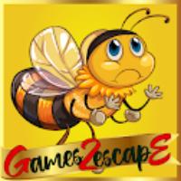 G2E Find Honey For Bee HT…