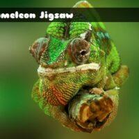 G2M Chameleon Jigsaw