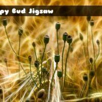 G2M Poppy Bud Jigsaw