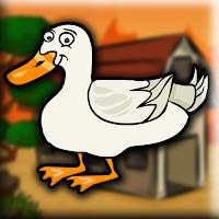 G2J Pekin Duck Escape Fro…