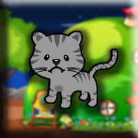 G2J Small Cat Escape
