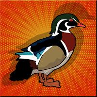 G2J Wood Duck Escape
