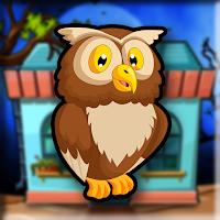 G2J Barred Owl Escape