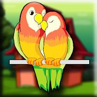 G2J Lutino Bird Escape