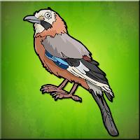 G2J The Jay Bird Escape
