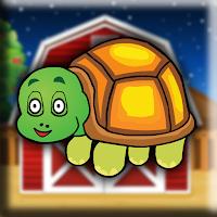G2J Cute Baby Tortoise Es…