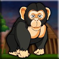 G2J Gorilla Hungry Escape