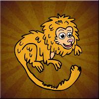 G2J Golden Lion Tamarin E…
