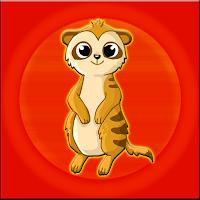 G2J Meerkat Escape