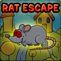G2J Red Eyed Rat Escape