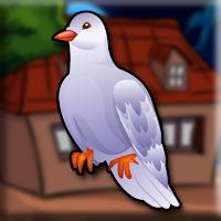 G2J Racing Pigeon Escape