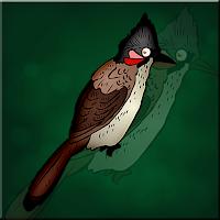 G2J Bulbul Bird Escape