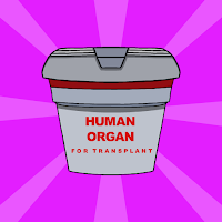 G2J Find The Human Organ …