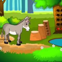 G2M Donkey Rescue