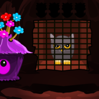 G2M Owl Rescue