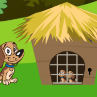 G2L Puppies Rescue