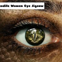 G2M Crocodile Women Eye Jigsaw
