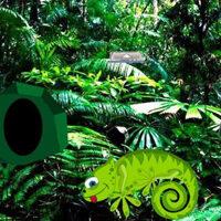 G2R-Chameleon Rain Forest Escape HTML5