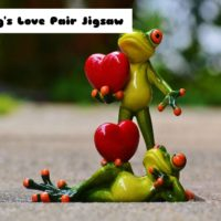 G2M Frog's Love Pair Ji…