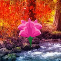 Wow Fall Water Forest Esc…
