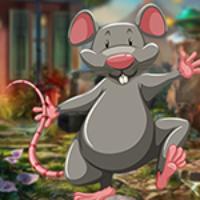 G4K Benign Rat Escape