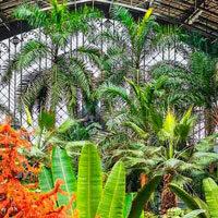 G2R-Big-Nursery Plant Gar…