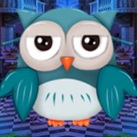 Palani Blameless Owl Esca…