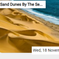 Sand Dunes By The Seashor…