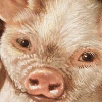 The Prize Piggies