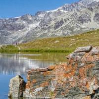 Matterhorn Reflected In S…